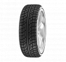Achilles Winter 101X 225/55R16 99H